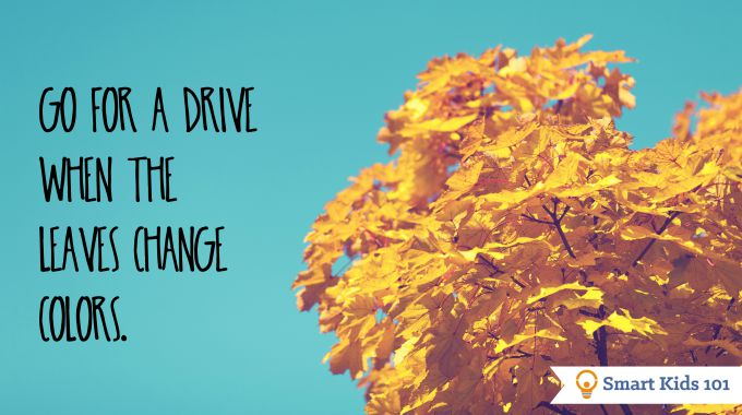 Go for a drive when the leaves change colors and other fun fall activities!