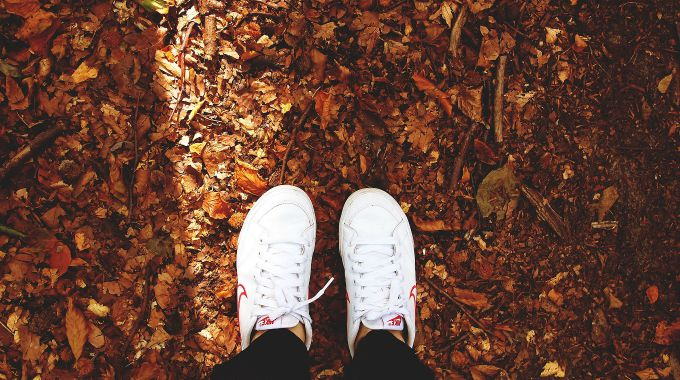 Take a walk in the fall leaves and other fall activities at the link.