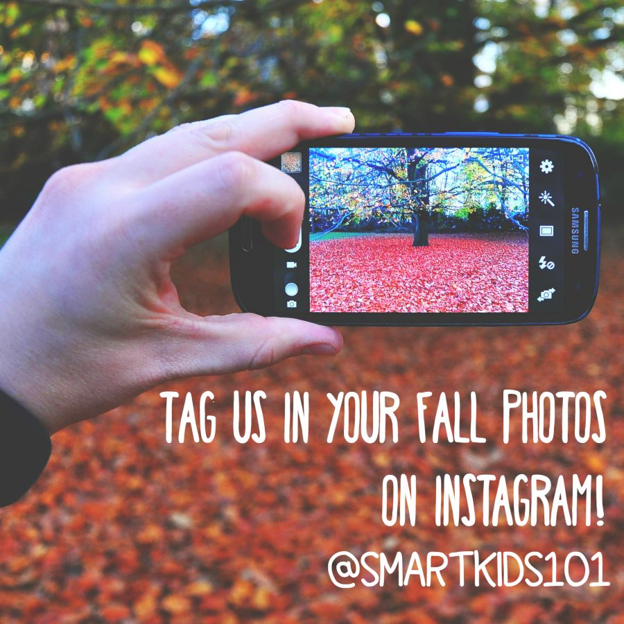 Take a fall photo and send it to us!